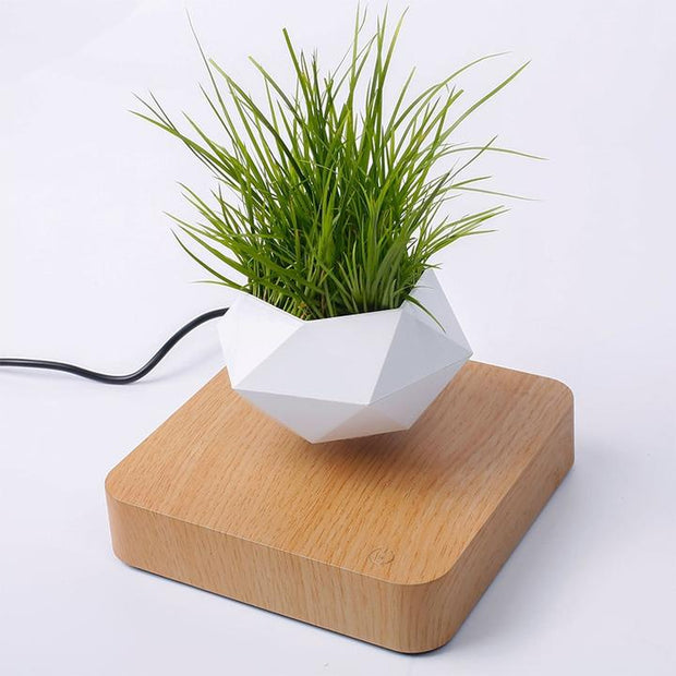 Levitating Pot Floating Plant Pot