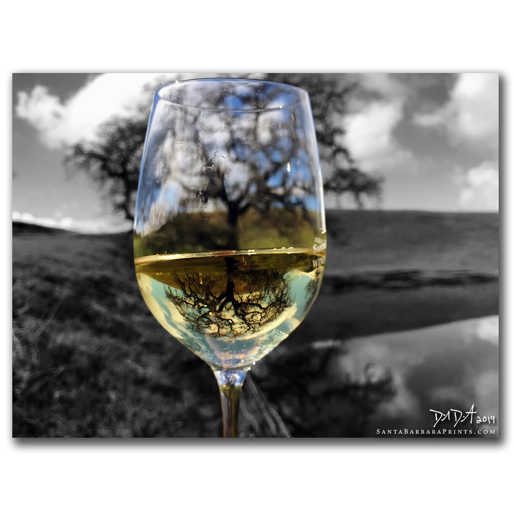 Wineglasses - 22, Armour Ranch Road