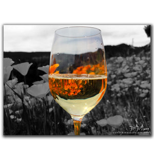 Wineglasses - 23, Happy Canyon