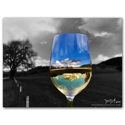 Wineglasses - 29, Nojoqui