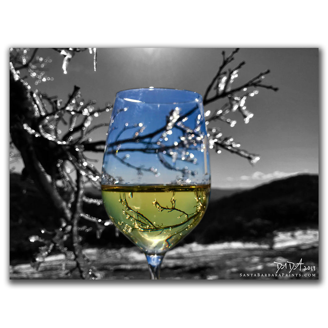 Wineglasses - 3, Figueroa Mountain