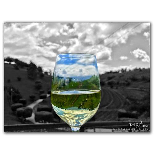 Wineglasses - 8, Ballard Canyon