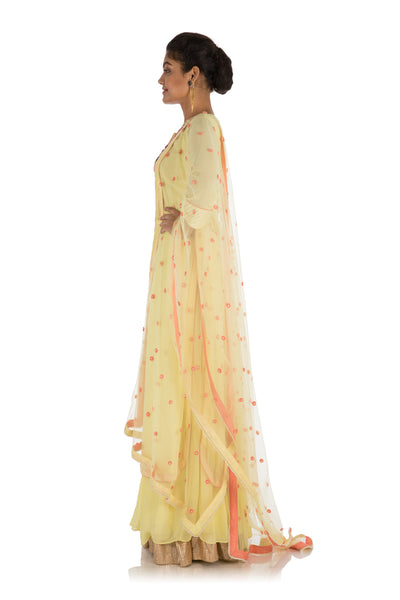 Anju Agarwal Hand Embroidered Yellow sharara set