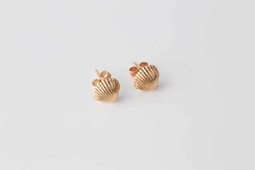 COCKLE SHELL stud earrings - gold plated