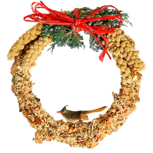 Mr. Bird Rustic Wreath 10""