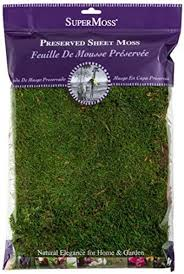 Super Moss Perserved Sheet Moss 8oz