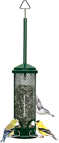Squirrel Buster Feeders