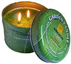 Amazon Lights Garden Candle