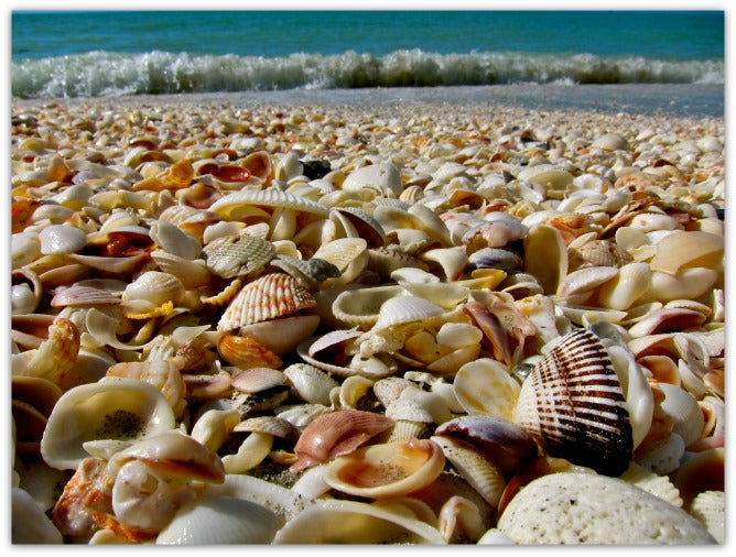 Florida-beaches-pinterest