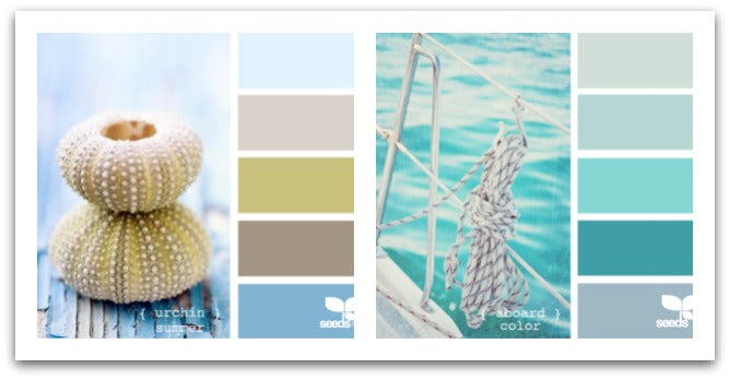 Seeds-coastal-color-inspiration