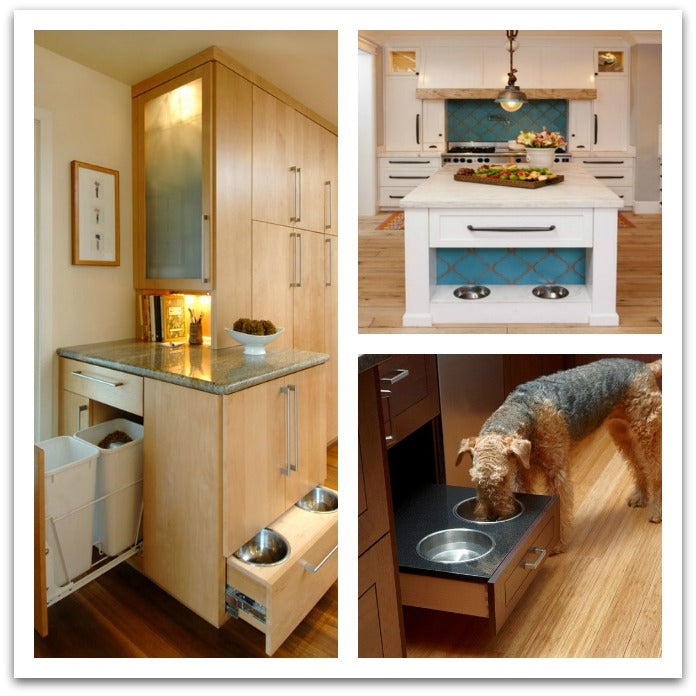pet-feeding-station- 2016-trends-kitchen