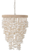 Cone Clamrose Seashell Chandelier, White
