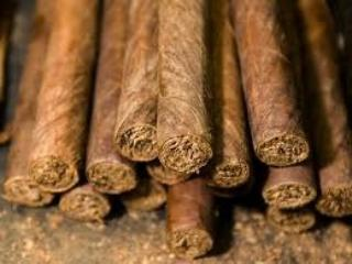 Highbrowbacco - Cigar