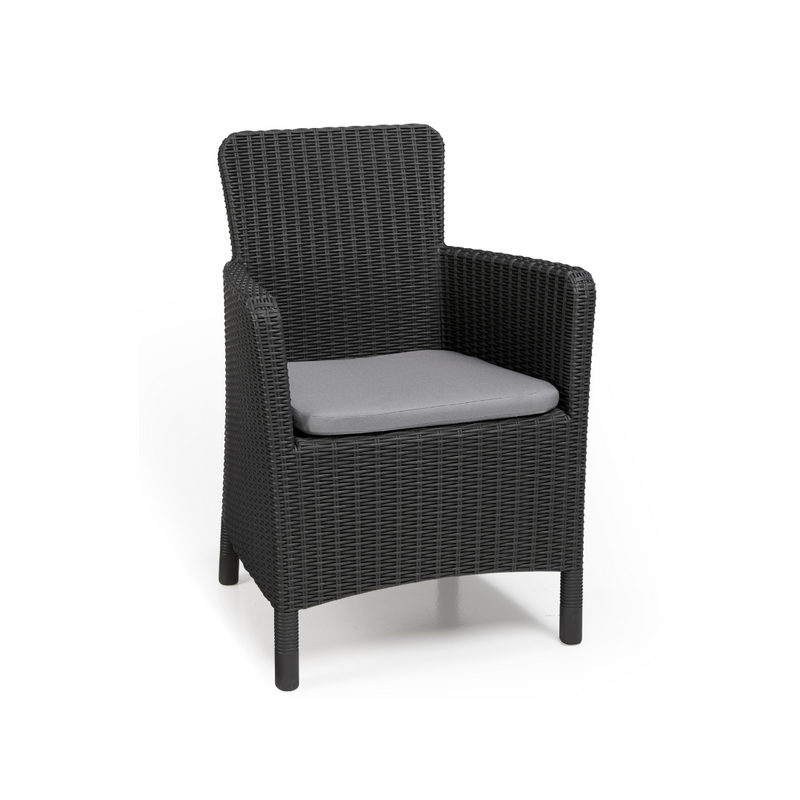 Trenton Dining Chair - Graphite
