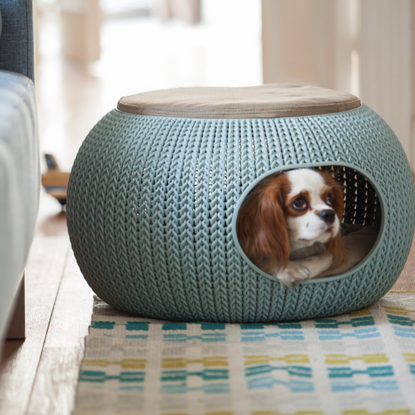 Cozy Pet Home