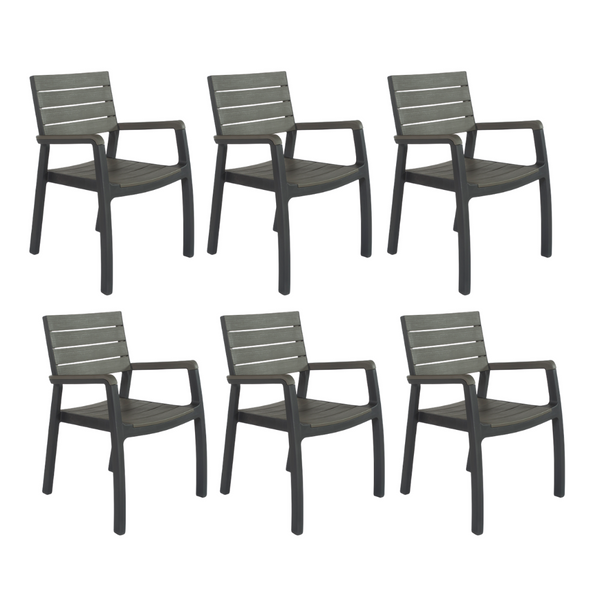 Set of 6: Harmony Dining Arm Chairs * PREORDER