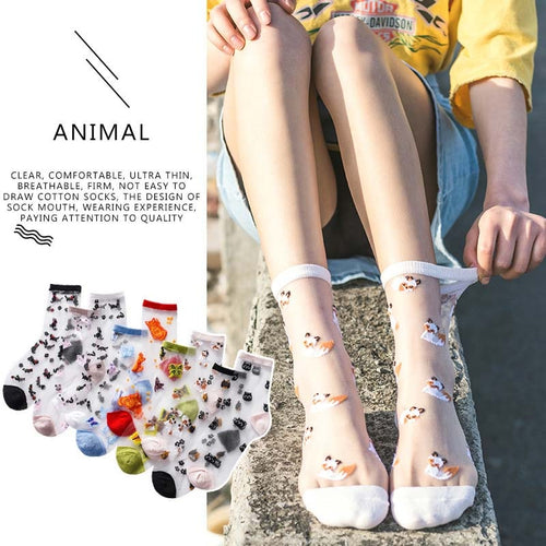 2020 Spring Summer Glass Silk Socks Women Cute Animal Japanese Style Socks Ultra-thin Transparent Embroidery Socks As A Gift