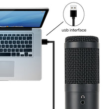 Cargar imagen en el visor de la galería, USB microphone condenser computer microfono condensador for PC  for Youtube studio recording internet meeting singing YR04