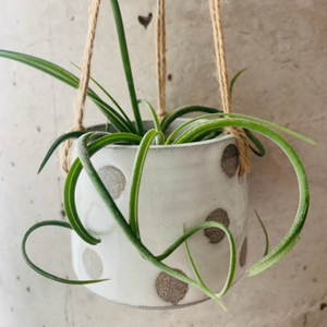 Medium Granite and White Polka Dot Hanging Planter