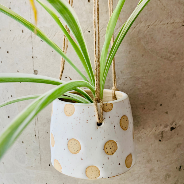Medium Polka Dot Hanging Planter