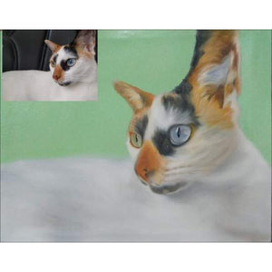 Oil Pet Portrait