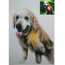 Load image into Gallery viewer, Pencil Color Pet Portrait