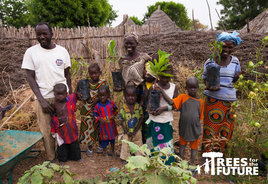 food trees for poverty