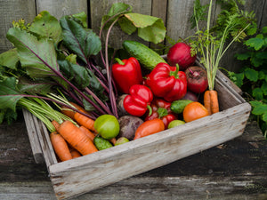 Browse our Veg Seeds