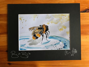 Busy bee be still. Signed photo print in a black mount.