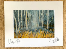 Unknown path, signed photo print in a white mount.