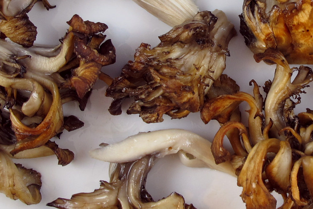 Mushrooms [v+, gf] (+$1 per person)