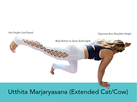 Yoga Pose for Balance - Extended Cat Cow | My Yoga Essentials
