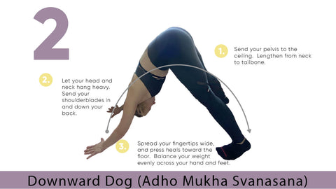 Downward Dog Yoga Pose for Flexibility | My Yoga Essentials