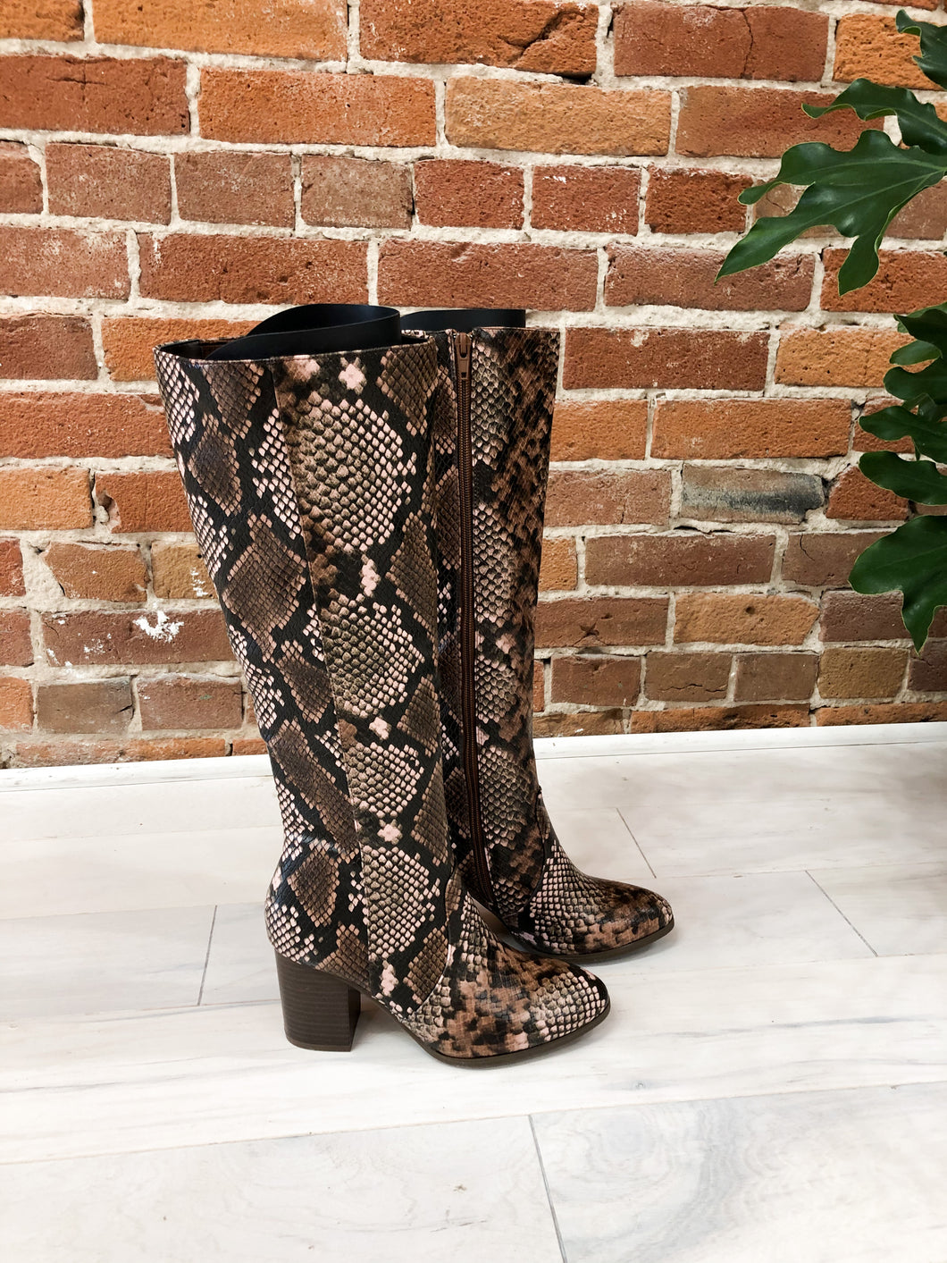 Perfect Knee High Boots in Brown
