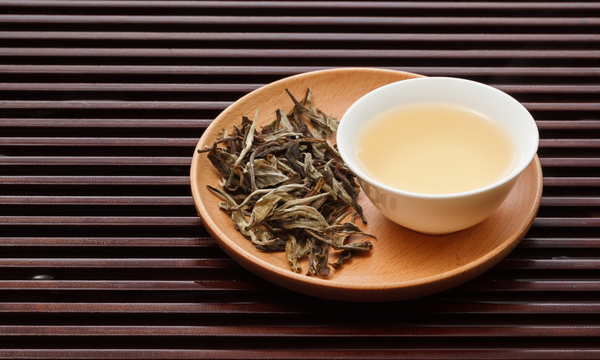 White tea in cup with dry leaf