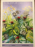 Medicinal Plants and Flowers of Palestine Print