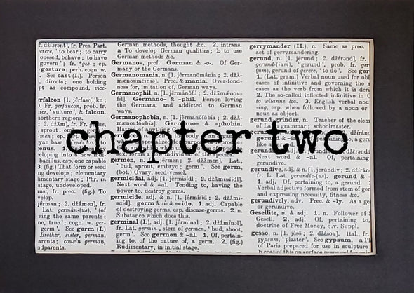 chapter two print