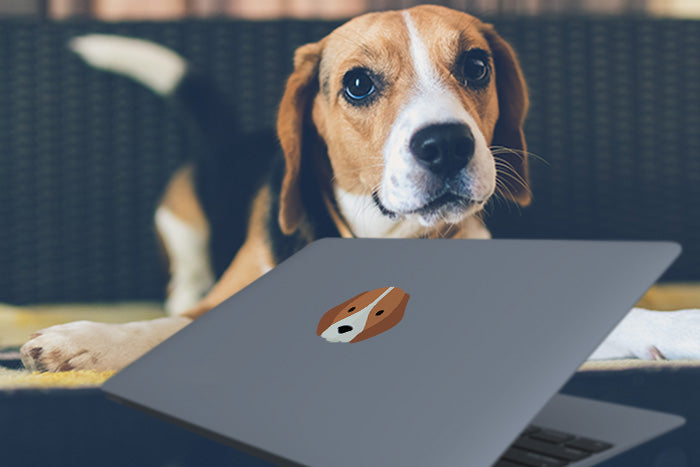 beagle macbook sticker on laptop
