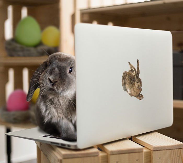 easter bunny behind macbook with reusable sticker
