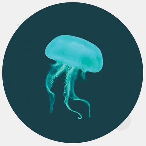 "opaque ""jellyfish"" reusable macbook sticker by tabtag"