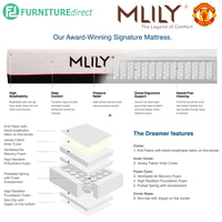 MLILY 10″ Dreamer Pocketed Spring Memory Foam Mattress - Queen size