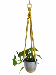 Blue Hanging Planter with Kiwi Macramé