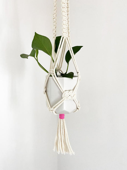 White Macrame Plant Hanger with Pink Accent