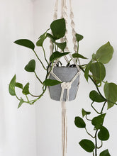 Load image into Gallery viewer, Natural Plant Hanger with Josephine Knots