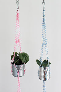 Modern Rope Plant Hanger with Carabiner - Assorted Colours