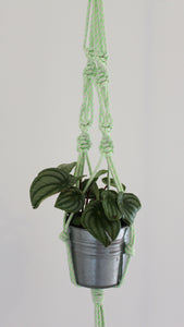 Recycled Poly Plant Hanger - Assorted Colours