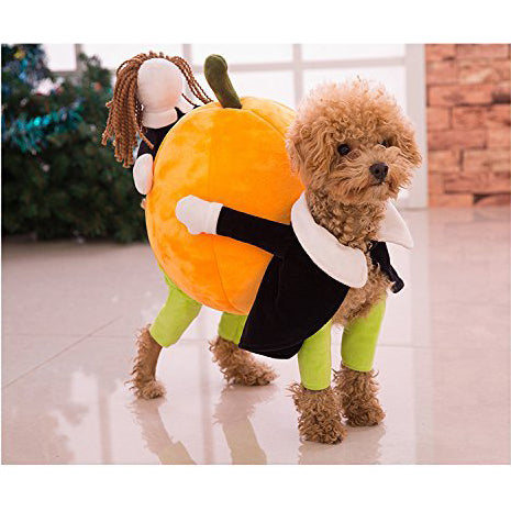 Funny Pumpkin Dog Costume