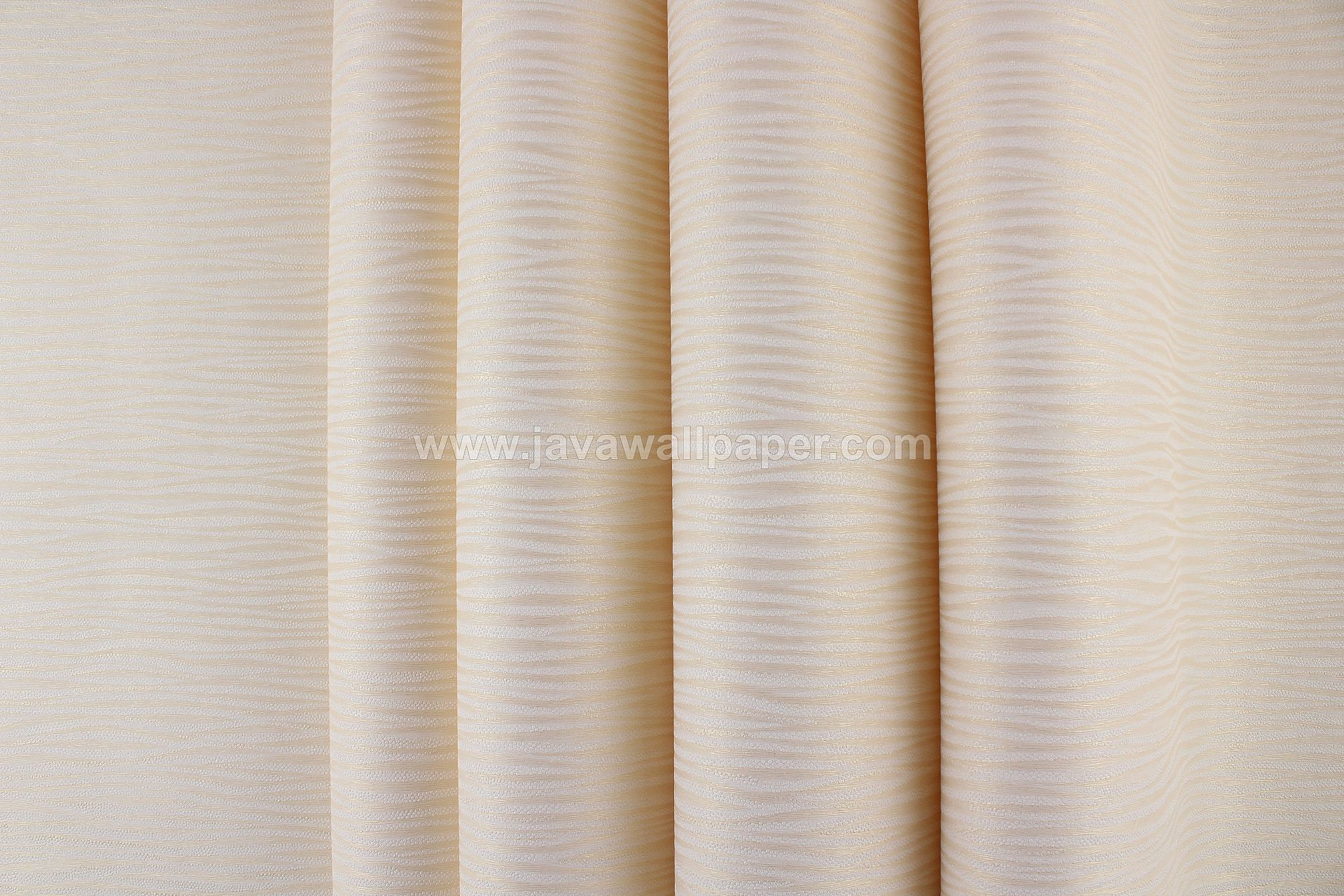 Wallpaper Dinding Garis Sulur Gold D1809-2 - Java Wallpaper