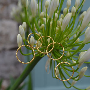 The Simple twist ring
