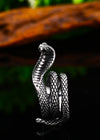 Grosse Bague Serpent